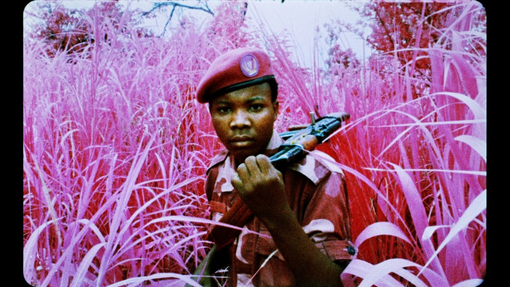 Richard Mosse, Film still from The Enclave, 2012-2013, showing a rebel from Mai Mai Yakutumba posing in Elephant Grass in Fizi, South Kivu, eastern Democratic Republic of Congo, 16 mm infrared film transferred to HD video, 39 minutes 25 seconds, Produced in eastern Democratic Republic of Congo, Director/Producer: Richard Mosse, Cinematographer/Editor: Trevor Tweeten, Composer/Sound Designer: Ben Frost, Courtesy of the artist and Jack Shainman Gallery, New York.