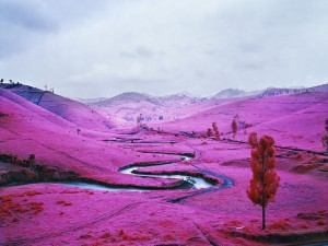 Richard Mosse Platon, 2012 digital c-print 72 x 96 inches - Edition of 2 + AP 40 x 53.5 inches - Edition of 5 + AP RIM12.019  © Richard Mosse. Courtesy of the artist and Jack Shainman Gallery, New York.