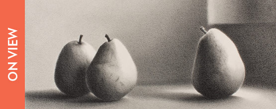 Martha Alf (American, born 1930), Pears Series XIII #2, 1984-1985, graphite on paper, 12 x 18 in, Gift of a Private Donor.