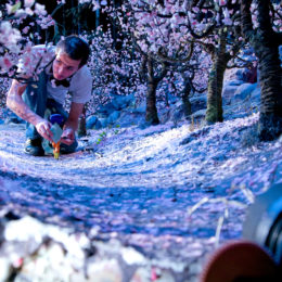 Animator Chris Tootell guides Coraline through an orchard of popcorn blossoms.