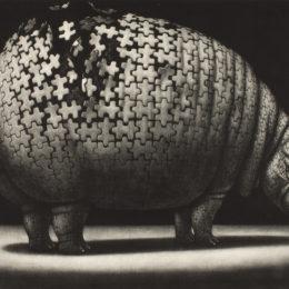 Sakazume Atsuo (Japanese, born 1941), Safari Land—Satiation, 1983, mezzotint, Portland Art Museum: The Carol and Seymour Haber Collection, © Sakazume Atsuo