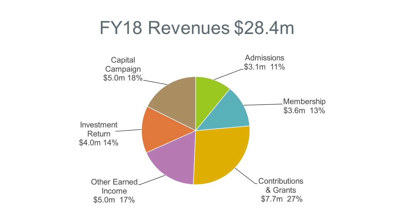 Chart of 2018 Revenues