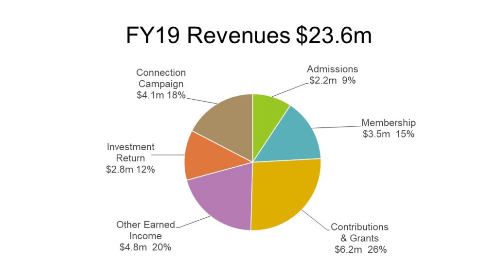 Chart of FY19 Revenues