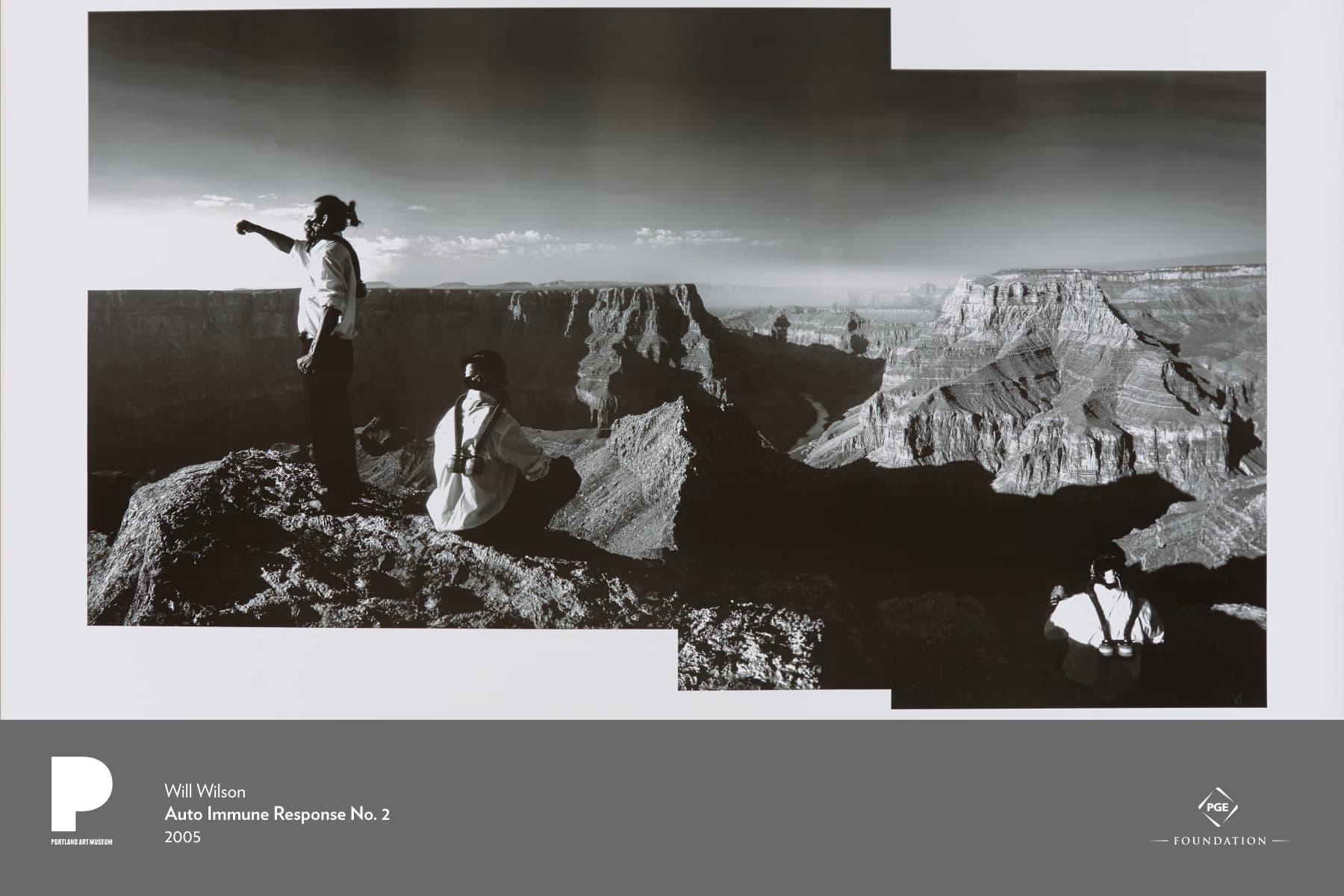 Will Wilson (American and Navajo, born 1969) Auto Immune Response No. 2, 2005